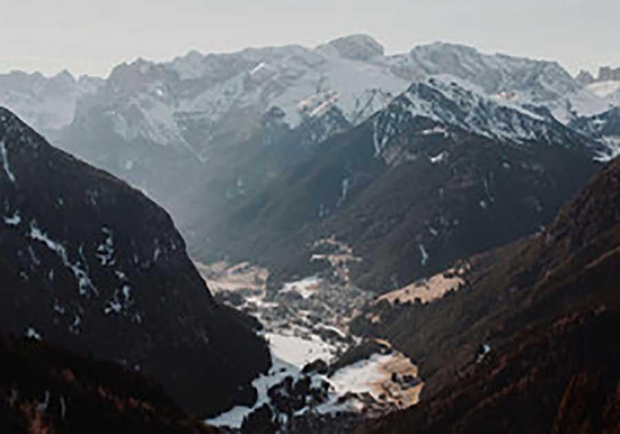 陶虎溪画像图片